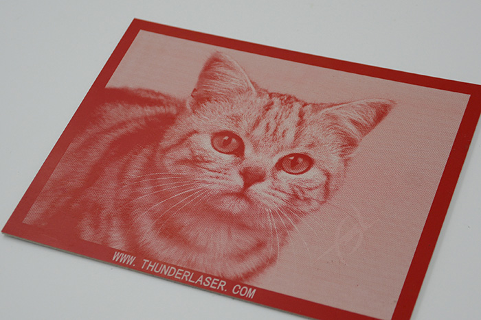 cat High-Resolution laser engraver