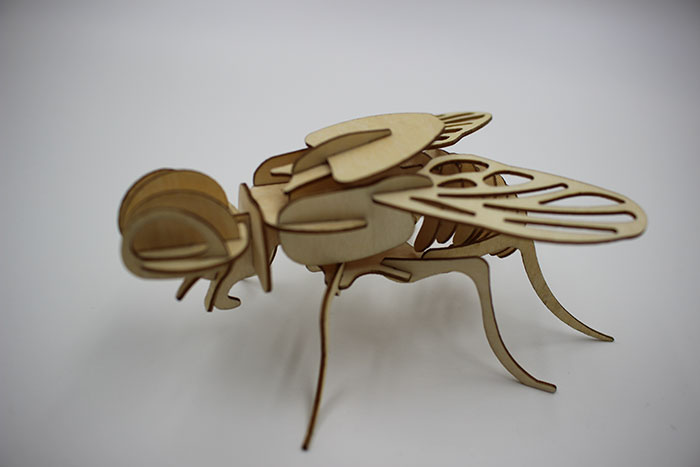 wood fly Лазерний станок для фанери